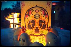 skull (VintageReflection) Tags: retrotwin lostillusion75 halloween dia de los muertos day dead skull candle candlelight ghost night evening celebration da tag der toten figur figure berlin am 31102015 calaca macabre totenschdel knochen bones totenkopf november mexican traditional feast fest death skelett kulisse folklore culture kultur deutschland germany allerheiligen la head calavera sugarskull |