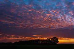 Before sunrise (bmpala2) Tags: blue light shadow sky cloud sun sunrise dark landscape la nikon darkness calm bluehour shape naturescall d7100 flickrelite treeofhonor