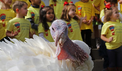11-17-2015 Governor Bentley grants Clyde the Turkey a Pardon