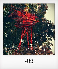 """#DailyPolaroid of 10-10-15 #12 • <a style=""""font-size:0.8em;"""" href=""""http://www.flickr.com/photos/47939785@N05/23187711606/"""" target=""""_blank"""">View on Flickr</a>"""