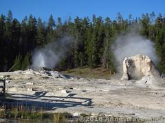 Grotto Geyser (Annes Travels) Tags: yellowstone wyoming uppergeyserbasin geysers geothermal