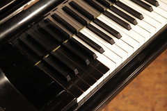 Paint it black! Bosendorfer Model 290 piano 8 extra bass notes (Besbrode Pianos Leeds) Tags: bosendorfer grand piano 290 imperial bass notes besbrode pianos