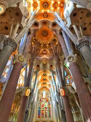 Looking up (Sean Paull) Tags: barcelona iphone iphonography iphone7 iphone7plus sagradafamília sagrada família spain gaudi church cathedral catholic