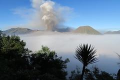 IMG_4265 (JoStof) Tags: indonesia java bromo volcano eruption ash seaofclouds smoke cemorolawang tengger caldera batok jawatimur indonesië idn
