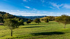 Green grass and blue skies over Santa Teresa County Park (donjd2) Tags: greengrass santateresacountypark bluesky pueblopicnicarea clouds sanjose california unitedstates us