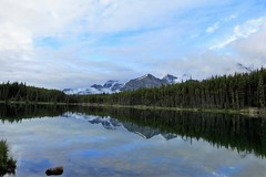 Mirrored (Patricia Henschen) Tags: morning clouds cloudy boreal forest lake lac herbert banff banffnationalpark nationalpark parkscanada parks parcs mountains mountain rockymountains rockies rocky northern canadian canada canadianrockies reflection reflections water lakelouise alberta icefieldsparkway bowrange fog