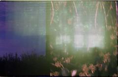 kodak hz double008 (SSIMON606) Tags: kodak horizon expired double exposure