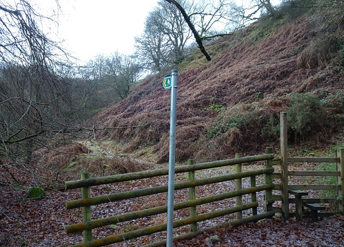 Footpath, Blaen Bran, Upper Cwmbran 10 January 2017