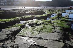 MRP_7358 (preedyphotos) Tags: cornwall kernow portreath beach coast northcornihcoast rocks tidesout walkingonbthebeach beachwalking outdoors exercise sand martinpreedy canon eos1dx