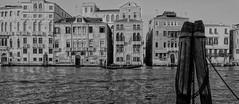 Pel Gran Canal (Isidro Jabato) Tags: venecia venezia venice