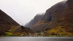 Underdal  9. nov -15 (bjarne.stokke) Tags: sognefjorden sognogfjordane aurlandsfjorden høst norway norge norwegen