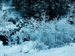 #snow #ice #Altoadige ❄️ (erika.bortolotti) Tags: altoadige