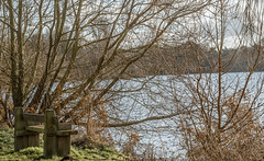 Space for 2 (Coisroux) Tags: bench seat views wooden engraving lakeside distance brightness sunlight shadows reflections cozy parks d5500 nikon secluded weathered countryside isolated solitary offthebeatentrack two england