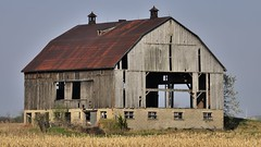 Abandoned old barn, Milton, Halton Region, Ontario. (edk7) Tags: nikond300 sigma50500mm1463apodghsmex edk7 2009 canada ontario haltonregion milton farm barn abandoned ruin dilapidated old field architecture building oldstructure country countryside rural gambrelroofline weatheredwood unpainted rustedroof