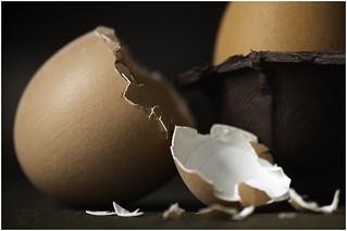 Macro Mondays - Egg - Cracked Egg