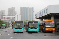 Shenzhen Bay Checkpoint buses (Canadian Pacific) Tags: china bus port bay crossing border chinese guangdong shenzhen   canton           aimg4506