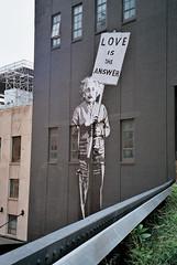 High Line NYC (lucia_bdzkv) Tags: nyc streetart einstein highline