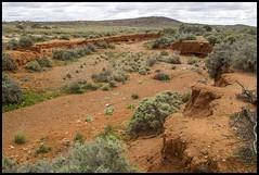 Erosion in Living Desert near Broken Hill (Sheba_Also 11,000,000 + Views) Tags: lake broken standing living desert near hill dry erosion nsw menindee