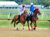 "2015-08-23 (49) r2 Jevian Toledo on #6 Tough Weather (JLeeFleenor) Tags: photos photography md marylandhorseracing laurelpark jockey جُوكِي ""赛马骑师"" jinete ""競馬騎手"" dżokej jocheu คนขี่ม้าแข่ง jóquei žokej kilparatsastaja rennreiter fantino ""경마 기수"" жокей jokey người horses thoroughbreds equine equestrian cheval cavalo cavallo cavall caballo pferd paard perd hevonen hest hestur cal kon konj beygir capall ceffyl cuddy yarraman faras alogo soos kuda uma pfeerd koin حصان кон 马 häst άλογο סוס घोड़ा 馬 koń лошадь outside maryland"