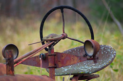 IMGP0844.jpg (GSankary) Tags: fall farm farms ruralscenes farmscenes farnall