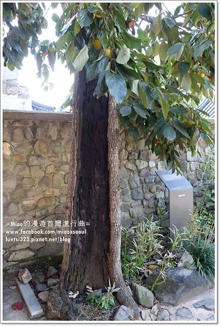 양림동근대역사문화마을64