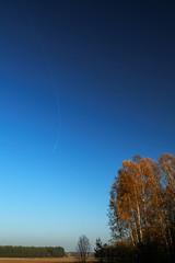 Przecinek na jesiennym niebie (jacekbia) Tags: las blue autumn red brown nature field landscape poland polska natura pole niebieski jesie przyroda kurpie czerwony niebo licie brz naky