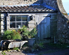 THE GARDEN SHED By Angela Wilson (angelawilson2222) Tags: building architecture garden outdoor shed northumberland holyisland gardenshed