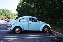 Sky Blue VW Beetle; Manhasset, New York (hogophotoNY) Tags: blue usa ny vw us vwbug skyblue manhasset manhassetny
