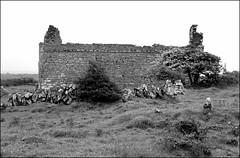 Carron Church (catb -) Tags: ireland blackandwhite bw church monochrome ruins clare carron 2014