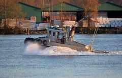 Sea Imp XVII (drmack2) Tags: low profile surrey tugboat shallow fraserriver lumber newwestminster draft catherwood