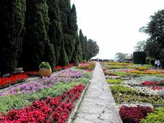 The garden in Balchik, Black sea, Bulgaria (Stella VM) Tags: flowers sea garden botanical palace bulgaria blacksea balchik
