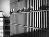 shadows (NicolaeSbiera) Tags: city canon sx220hs