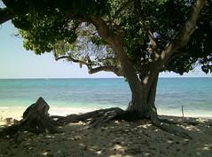 Big Island, Hawaii (LarrynJill) Tags: travel family hawaii bigisland kona 2015