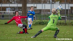 WS20151205_3576 (Walther Siksma) Tags: soccer voetbal d1 gelderland fortissimo 2015 putten sdcd1 fortissimod1