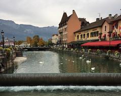 Le Thiou, Annecy, France (Sofie Lasiuk) Tags: france annecy fr 2015 rhônealpes lethiou
