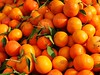 Freshness Healthy Eating Abundance Orange Color Retail  Fruit Large Group Of Objects Food And Drink Food Orange - Fruit No People Full Frame Market Stall Market For Sale Heap Close-up Consumerism Outdoors Day מייאייפון7 מייתרשיחא מייפוד (dinalfs) Tags: freshness healthyeating abundance orangecolor retail fruit largegroupofobjects foodanddrink food orangefruit nopeople fullframe marketstall market forsale heap closeup consumerism outdoors day מייאייפון7 מייתרשיחא מייפוד