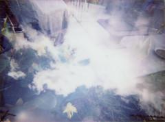 img005-2.jpg (fdelgado70) Tags: batch2k07412 bestbefore0616 cheki fujifilm fujifilminstax instax lomoinstant lomoinstantwhitecamera lomographysociety otherkeywords
