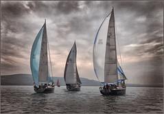 Solent Sunrise (rogermccallum) Tags: sail sailing solent roundtheisland sunrise boat boating