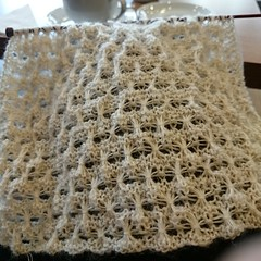 03 The other half (siouxian) Tags: knitting wool scarf 2ply fine lace 325mm