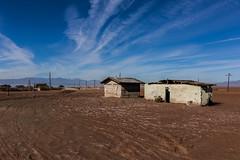 Abandoned bathrooms. Have to trudge through deep mud to get here. (slworking2) Tags: nilandmarina niland saltonsea urbex urbanexploration decay abandoned lake desert california toilet loo bathroom kybo