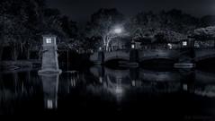 On this night... (JDS Fine Art & Fashion Photography) Tags: water bridge night urbanlandscape shadows light noir filmnoir trees