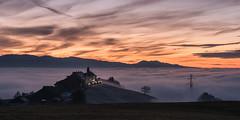 Twilight and fog (helena678) Tags: sunset twilight fog monastery tree evening december switzerland schweiz