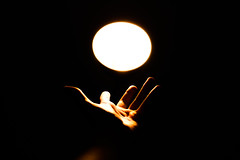 hand under the light (Matthew Crake) Tags: light hand dark glow self reach grasp