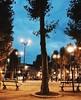 2016 (linnea.tammeras) Tags: lights night evening park brussels