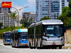 7 2392 Viação Campo Belo (busManíaCo) Tags: busmaníaco nikond3100 bus ônibus urbano caio millennium brt articulado mercedesbenz o500uda bluetec 5 viaçãocampobelo