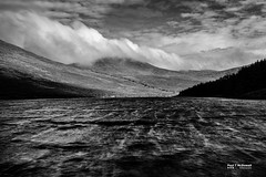 Movement II (Paul T McDowell Photography) Tags: 2016 bank blackandwhitephotography bright camera canonef35mmf2isusm canoneos5dmarkii cloudy colour countydown day digital evergreen field fineartphotography fofannydamreservoir forest glen grass hiking horizontal image lake landscape landscapephotographer lens lough mountain mournemountains nature northernireland ottmountain orientation outdoor paultmcdowellphotography photography places reservoir season sky slieveloughshannaghmountain slievemeelmoremountain summer sunny time unitedkingdom water weather windy year