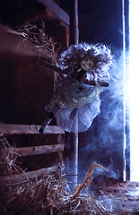 levitate (tehhishek) Tags: levitation ooak custom doll mx mattel model monster high spectrum spring barn village light fog morning