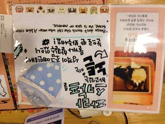 Rule book (j-fi) Tags: cats cute strange fur feline asia fat korea odd seoul aww catcafe