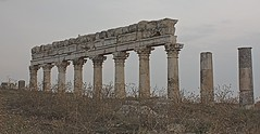 Part of the colonnade, Apamea, Syria (susiefleckney) Tags: apamea syria hama ghabplain seleucid roman byzantine arab ruins archaeology ancient westernasia