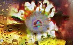 'Inner Sanctum' #Photography #PhotoManipulated #DigitalArt #DigitalIllustration #surreal #surrealism #AbstractSurreal #butterflies #explosion #entering #renew #soul #UsagigunnDesignInx #SarahMaurer #SarahArt (Usagigunn79) Tags: photography surrealism digitalart explosion butterflies surreal soul entering photomanipulated renew digitalillustration sarahart abstractsurreal sarahmaurer usagigunndesigninx